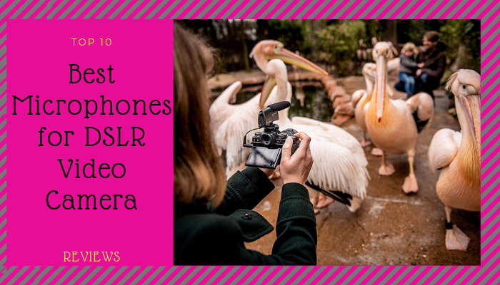 best microphones for DSLR video camera